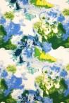 LEN - FOREST SKY
